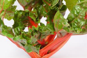 Мангольд: рецепты полезных и вкусных блюд