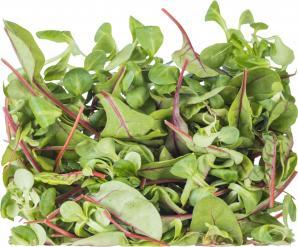 Кресс-салат подарит энергию