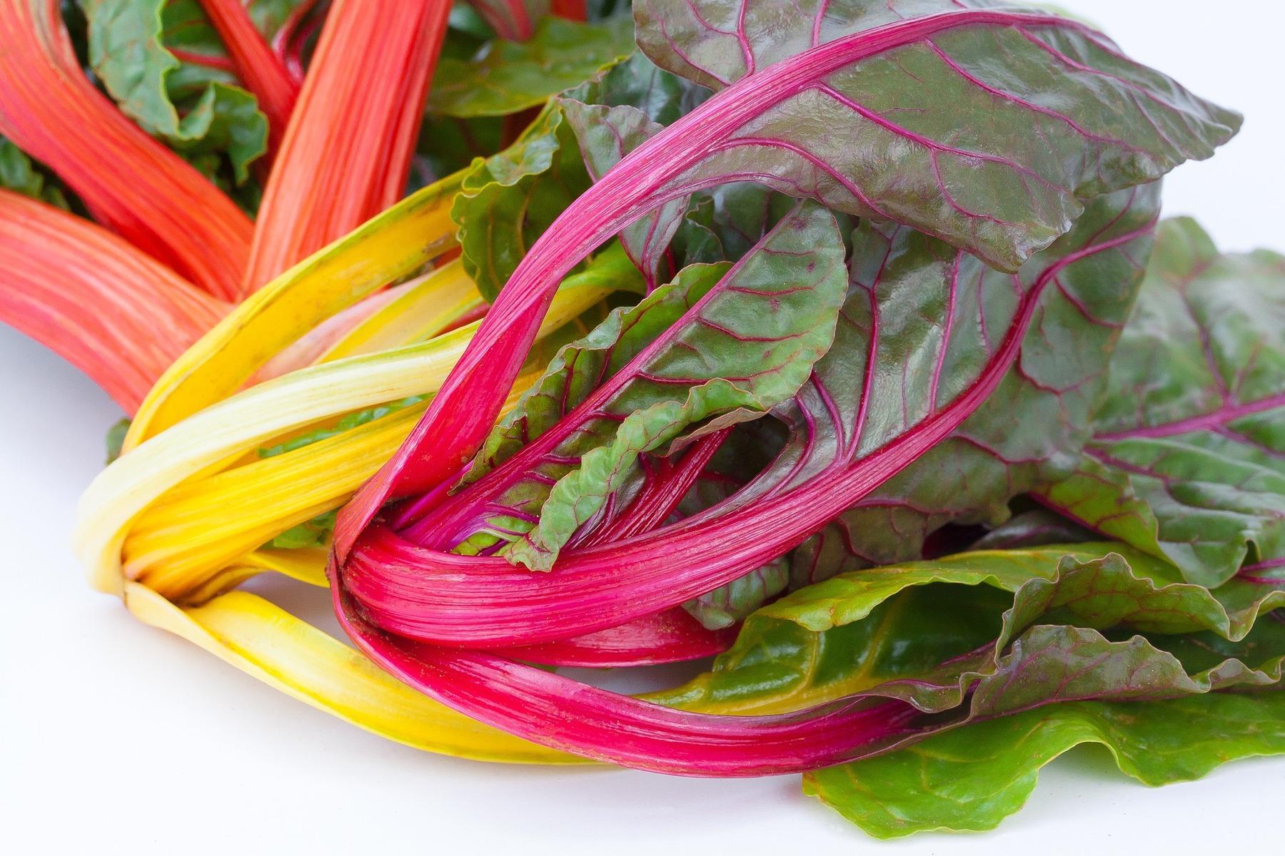 Мангольд: новые рецепты салатов, Салаты Белая Дача