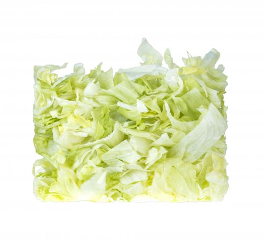 Хрустящий салат айсберг рекомендации